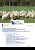 Synthese-technico-économique_ovin-viande_2018.pdf - application/pdf