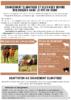 2020-Bio 63-Fiche climat elevage bovins.pdf - application/pdf
