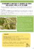2020-Bio 63-Fiche climat grandes cultures.pdf - application/pdf