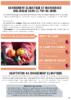 2020-Bio 63-Fiche climat maraîchage.pdf - application/pdf